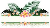 Tropical Climate,Sign,Banner,Frame,Placard,Leaf,Palm Tree,Single Flower,Flower,Summer,Plant,Clip Art,Backgrounds,Floral Pattern,Grass,Travel Locations,Travel Backgrounds,Nature,Holidays And Celebrations,Ilustration,Vector,Beauty In Nature,Branch