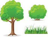 Bush,Tree,Plant,Grass,Isolated,Ilustration,Green Color,Vector,Set,Nature,Style,Leaf,Branch,Image,Brown,Group of Objects,Beauty In Nature,Design Element,Illustrations And Vector Art,Vector Cartoons,Isolated-Background Objects,Plants,Isolated Objects,Nature