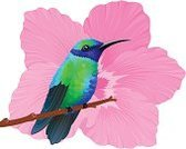 Hummingbird,Bird,Tropical Climate,Hibiscus,Tropical Bird,Multi Colored,Nature,Saturated Color,Tropical Flower,Wildlife,One Animal,Vector Cartoons,Illustrations And Vector Art,Birds,Wild Animals,Animals And Pets,Animal,Animals In The Wild