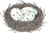 Animal Nest,Bird's Nest,Animal Egg,Drawing - Art Product,Vector,Woven,Springtime,Black Color,Gray,Decoration,Isolated,White,Hatching,Pencil Drawing,Ilustration,Holidays And Celebrations,Birds,Illustrations And Vector Art,Easter,Branch,Blue,Nature,Animals And Pets