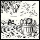 Farm,Apple - Fruit,Woodcut,Orchard,Barn,Fruit,Old-fashioned,Crop,Harvesting,Bushel,Frame,1940-1980 Retro-Styled Imagery,Apple Orchard,Gardening,Autumn,House,Engraved Image,Black Color,Drawing - Art Product,Rural Scene,Cloud - Sky,Food,Ilustration,Tree,White,Agriculture,Bucket,Line Art,Leaf,Landscaped,Hill,Vector,Field,Nature,Gardening Equipment,Village,Backgrounds,Print,Scenics,Branch,Land,Plant,Computer Graphic,Wind Turbine,Horizon Over Land,Nature,Outdoors,Illustrations And Vector Art,Industry,Landscapes,Agriculture,Season