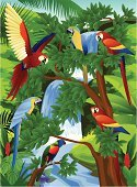 Tropical Rainforest,Parrot,Tropical Climate,Toucan,Waterfall,Animal,Forest,Bird,Ilustration,Tree,Flying,Wildlife,Leaf,Green Color,Nature,Vector,Animals In The Wild,Flower,Branch,Plant,Beauty In Nature,Animals And Pets,Illustrations And Vector Art,Birds,Vector Backgrounds