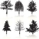 Tree,Silhouette,Weeping Willow,Vector,Leaf,Oak Tree,Ilustration,Cherry Tree,Nature,Nature,Illustrations And Vector Art