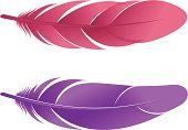 Feather,Vector,Ilustration,Isolated Objects,Illustrations And Vector Art