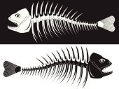 Fish,Animal Skeleton,Animal Bone,Fossil,Human Spine,Animal Skull,Torn,Anatomy,Animal Teeth,Animal Mouth,Animal Vertebra,Human Jaw Bone,Dead Animal,Eaten,Dead Person,Animal Backgrounds,At The Edge Of,Ilustration,Underwater,Black Color,White,Canine,Animals And Pets,Animal Fin,Sharp,Inside Of,Vector,Fish Tail,inedible