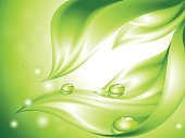 Water,Leaf,Spray,Drop,Green Color,Growth,Backgrounds,Springtime,Environmental Conservation,Abstract,Plant,Dew,Freshness,Pattern,Floral Pattern,Curve,Design,Wave Pattern,Light - Natural Phenomenon,Vector,Summer,Waving,Creativity,Elegance,Season,Image,Architectural Revivalism,Botany,Bush,Spotted,Nature,Vegetative Stage,Curled Up,Inspiration,Imagination,Design Element,Nature Abstract,Branch,Nature,Painted Image,No People,Beauty In Nature,Nature Backgrounds,Vector Backgrounds,Composition,foliagé,Illustrations And Vector Art,Reflection,Lush Foliage,Blob,Decoration,Shape,Ilustration