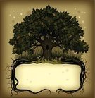 Tree,Root,Oak Tree,Magic,Forest,Fairy,Fairy Tale,Frame,Acorn,Retro Revival,Nature,Old-fashioned,Sign,Vector,Symbol,Banner,Ilustration,Computer Graphic,Drawing - Art Product,Leaf,Poster,Single Object,Branch,Fungus,Plant,Simplicity,Classic,Placard,Green Color,Copse,Season,Nature,Nature Backgrounds,Plants,Nature Symbols/Metaphors