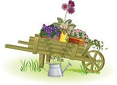 Gardening,Wheelbarrow,Cart,Flower,Flower Pot,Wood - Material,Violet,Watering Can,Springtime,Plant,Front or Back Yard,Ilustration,Potted Plant,Primrose,Wheel,Container,Primula,Care,Growth,Seedling,Cultivated,Image,Clay,Agriculture,Terracotta,Metal,Bud,Summer,Vector,Color Image,Ceramic,Isolated Objects,Outdoors,Isolated,Gardens,Tin,Twig,Grass,Nature,Flowers,Green Color,Leaf,Nature,Equipment