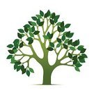 Tree,Leaf,Growth,Branch,Green Color,Bush,Vector,Environment,Environmental Conservation,Tree Trunk,Ilustration,Organic,Springtime,Nature,Plant,Color Image,Plants,Nature,Spring,White,Stem,Summer,Illustrations And Vector Art