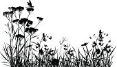 Grass,Meadow,Flower,Silhouette,Dragonfly,Butterfly - Insect,Field,Nature,Vector,Botany,Summer,Illustrations And Vector Art