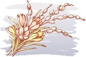 Flower,Bouquet,Pussy Willow,Crocus,Springtime,Easter,Drawing - Art Product,Flower Arrangement,Bud,Leaf,Backgrounds,Spring Bouquet,Petal,Holiday Backgrounds,Holidays And Celebrations,Cut Flowers,Easter,Vector Florals,Illustrations And Vector Art,Floral Pattern,Ilustration,Sketch,Outline