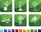 Seed,Growth,Root,Tree,Plant,Cultivated,Computer Icon,Icon Set,Vector,Green Color,Label,Tree Stump,Sparse,Leaf,Ilustration,Woodland,Red,Empty,Wilderness Area,Square Shape,No People,Animal,Bird,Blue,Woodpecker,Black Color,White Background,Branch,Wildlife,Design,Passerine