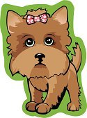 Yorkshire,Yorkshire Terrier,Dog,Terrier,Small,Lap Dog,Friendship,Fluffy,Animals And Pets,Dogs,Toy,Brown,Pets,Canine,Fur