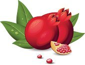 Pomegranate,Fruit,Ilustration,Vector,Isolated,Drop,Healthy Lifestyle,Part Of,Slice,Seed,Leaf,Green Color,Ripe,Red,Illustrations And Vector Art,Isolated On White,Fruits And Vegetables,Healthy Eating,Food And Drink,Isolated Objects,Food,Vegetarian Food,Refreshment,Organic,Freshness