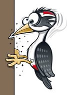 Woodpecker,Bird,Cartoon,Humor,Vector,Beak,Wing,Pecking,Feather,Damaged,Ilustration,Illustrations And Vector Art,Character Traits,Birds,Vector Cartoons,Animals And Pets,Concepts And Ideas,Butting,Cross-Eyed,Ruined,Vertical