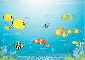 Fish,Aquarium,Sea,Tropical Climate,Reef,Underwater,Cartoon,Underwater Diving,Coral,At The Bottom Of,Water,Backgrounds,Vector,School,Fishbowl,Scenics,Ilustration,School of Fish,Seaweed,Tropical Fish,Image,Sea Life,Illustrations And Vector Art,Sea Life,Animals And Pets,Wildlife,Intricacy,Vector Cartoons