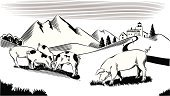 Pig,Mountain,Farm,Domestic Pig,Hill,Meadow,Ilustration,Farmhouse,White,Black And White,Black Color,Group Of Animals,Vector,Ranch,Landscape,Mammals,Animal Backgrounds,Art Product,Male Animal,Wild Pig,Animals And Pets,Pawed Mammal,Mammal,Hoofed Mammal,Digitally Generated Image,Farm Animals,White Background,Omnivorous,Scenics,Vertebrate,Herb,Female Animal,Animal,Computer Graphic