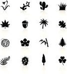 Acorn,Symbol,Cactus,Clover,Bamboo,Flower,Leaf,Grass,Icon Set,Nature,Vector,Fern,Black Color,Oak Leaf,Snowdrop,Fir Tree,Ilustration,Herb,Cypress Tree,Palm Tree,Vine,Plant,Botany,Marijuana Plant,Environment,Cartoon,Watermelon,Curled Up,Tendril,Isolated On White,Design Element,Swirl,Illustrations And Vector Art