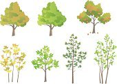 Tree,Cartoon,Symbol,Vector,Ilustration,Apple Tree,Clip Art,Deciduous Tree,Pine Tree,Autumn,Springtime,Isolated,Green Color,Plant,Drawing - Art Product,Set,Group of Objects,Summer,Design,White Background,Season,Color Image,Collection,Nature,Nature,Illustrations And Vector Art,Design Element,Isolated On White