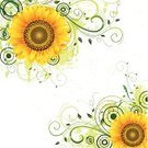 Sunflower,Flower,Backgrounds,Yellow,Swirl,Abstract,Pattern,Vector,Circle,Ilustration,Clip Art,Freshness,Grunge,Green Color,Colors,Vector Backgrounds,Illustrations And Vector Art