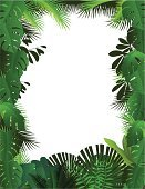 Tropical Rainforest,Frame,Leaf,Tropical Climate,Backgrounds,Vector,Forest,Plant,Green Color,Palm Tree,Tree,Grass,Environment,Nature,Ilustration,Branch,Beauty In Nature,Vector Backgrounds,Nature Backgrounds,Nature,Illustrations And Vector Art