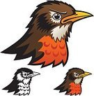 Bird,Robin,Mascot,Anger,Cartoon,Aggression,Vector,Sport,Symbol,Illustrations And Vector Art,Birds,Animals And Pets,Sports And Fitness,Animal Head,Ilustration,Outline,Drawing - Art Product