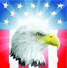 Eagle - Bird,Flag,Bald Eagle,Patriotism,Military,Animal Head,Vector,USA,Fourth of July,Backgrounds,American Culture,Star Shape,White,Bird,Red,Symbol,Blue,Mascot,Freedom,Politics,Profile View,Computer Graphic,Independence,Pride,Holidays And Celebrations,Concepts,Illustrations And Vector Art,Holiday Backgrounds,Animals And Pets,Backdrop,Holiday,Majestic,Birds,Ilustration,Striped
