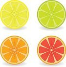 Citrus Fruit,Lime,Grapefruit,Lemon,Orange - Fruit,Cross Section,Symbol,Internet,Fruit,Freshness,Orange Color,Yellow,Ilustration,Vector,Part Of,Fruits And Vegetables,useful,Isolated,Succulent Plant,fleshy,cutest,Sweet Food,Set,Ripe,Image,Illustrations And Vector Art,Vector Icons,Isolated-Background Objects,fruitage,Isolated Objects,Food And Drink,Refreshment,Sour Taste,Green Color,Healthy Eating,Lush Foliage,Red