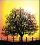 Tree,Fence,Silhouette,Ranch,Landscaped,Back Lit,Farm,Field,Sun,Paintings,Vector,Environment,Relaxation,Plant,Shadow,Digitally Generated Image,Branch,Focus on Shadow,Dusk,Environmental Conservation,Nature,Season,Gardens,Morning,Uncultivated,Outdoors,Summer,Sunlight,Land,No People,Growth,Grass,Leaf,Nature,Dark,Landscapes,Rural Scene