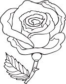 Rose - Flower,Black Color,White,Cartoon,Sketch,Drawing - Art Product,Flower,Single Flower,Vector,Ilustration,Formal Garden,Flower Bed,Ink,Plant,Flowers,Visual Art,Arts And Entertainment,inked,Illustrations And Vector Art,Nature