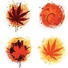 Leaf,Autumn,Japanese Maple,Computer Graphic,Design,Paint,Grunge,Spray,Vector,Backgrounds,Splattered,Design Element,Season,Swirl,Symbol,Color Image,Brown,No People,Yellow,Drop,Pattern,Red,Part Of,White Background,Gold Colored,Digitally Generated Image,Colors,Ilustration,Nature,Spraying