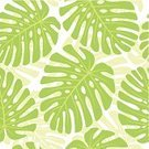 Tropical Rainforest,Cheese Plant,Leaf,Tropical Climate,Seamless,Backgrounds,Wallpaper Pattern,Plant,Green Color,Illustrations And Vector Art,Decoration,Nature,Vector Backgrounds,Vector Florals,Summer,Beauty In Nature,Plants,Single Object,Ilustration,Torn,Nature
