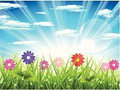 Flower,Single Flower,Springtime,Grass,Cloud - Sky,Landscape,Cloudscape,Vector,Field,Meadow,Sky,Summer,Sun,Landscaped,Nature,Blue,Water,Sunlight,Green Color,Pink Color,Ilustration,Drop,Plant,Outdoors,Red,Idyllic,Shiny,Design,Freshness,Reflection,Leaf,Landscapes,Spring,Nature,Copy Space,Horizontal,Illustrations And Vector Art