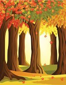 Forest,Autumn,Woodland,Tree,Maple Tree,Leaf,Nature,Fall,Vector Backgrounds,Illustrations And Vector Art,Vector,Ilustration,Orange Color,Season