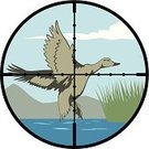 Hunting,Scope Mouthwash,Duck,Target,Aiming,Flying,Mallard Duck,Bird,Wing,Poultry,Sky,Lake,Landscape,Cartoon,Pond,Reed - Grass Family,Feather,Marsh,Tail,Animals In The Wild,Wildlife,Vector,Ilustration,Nature