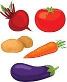 Carrot,Beet,Raw Potato,Vegetable,Symbol,Vector,Isolated,Eggplant,Tomato,Collection,Red,Vegetarian Food,Set,Ingredient,Ilustration,Ripe,Organic,Eating,Healthy Lifestyle,Fruits And Vegetables,Illustrations And Vector Art,Autumn,Food And Drink,Eating,Crop,Plant,Group of Objects,Green Color,Raw Food,Healthy Eating,Food,Nature,Leaf