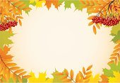 Autumn,Leaf,Frame,October,Abstract,Backgrounds,Ash Tree,Rowanberry,Yellow,Ilustration,November,Environment,Red,September,Decoration,Vector,Nature,Design,Pattern,Rowan Tree,Season,Plant,Green Color,Colors,Maple Tree,Orange Color