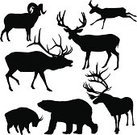 Deer,Silhouette,Animal,Reindeer,Back Lit,Elk,Wildlife,Animals In The Wild,Caribou - California,Hunting,Antler,Polar Bear,Pronghorn,Symbol,Bighorn Sheep,Animal Themes,Sheep,Mountain Goat,Vector,Antelope,Outline,American Black Bear,Asian Black Bear,Shape,North America,Profile View,Isolated,White Background,Group Of Animals,Cut Out,Walking,Standing,Ilustration,Brown Bear,Game Animals,Digitally Generated Image,graphic element,Design Element,Animals And Pets,zoo animals,Illustrations And Vector Art,Vector Ornaments,Large Group Of Animals,Isolated On White,Mammals,Mammal,big horn,north american wildlife,Sea Life,large mammal