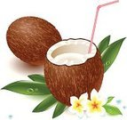 Coconut,Drink,Cocktail,Coco,Fruit,Vector,Tropical Climate,Dessert,Flower,Food,Lunch,Nut - Food,Magazine,Decoration,Drinking Straw,Label,Summer,Palm Tree,Merchandise,Backgrounds,Healthy Eating,Menu,Milk,Design,Cafe Culture,Tree,Leaf,Brochure,Dieting,Dinner,Multi Colored,Tranquil Scene,Organic,Toughness,Vegetarian Food,Vector Florals,Nature,Fruits And Vegetables,Plant,Gourmet,Domestic Kitchen,Illustrations And Vector Art,Nature,Green Color,Refreshment,Lifestyles,Food And Drink,Flowers,Juice,Freshness,Ilustration,Sweet Food,Exoticism