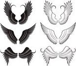 Angel,Wing,Spirituality,Aspirations,Black Color,Evil,Black And White,Heaven,Icon Set,Set,Religion,Design,Computer Icon,Digitally Generated Image,Ilustration,White Background,Vector,Group of Objects