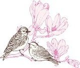 Bird,Flower,Single Flower,Retro Revival,Old-fashioned,Floral Pattern,Magnolia,Springtime,Drawing - Art Product,Ilustration,Branch,Pencil Drawing,Engraved Image,Two Animals,Botany,Vector,Sketch,Blossom,Plant,Decoration,Isolated,Elegance,White,Nature,Design Element,Art,Ornate,Pink Color,Summer,Painted Image,Pen And Ink,Animals And Pets,Illustrations And Vector Art,Clip Art,Birds,Nature,Cute,hand drawn