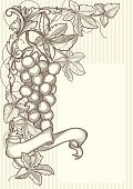 Grape,Vine,Frame,Corner,Retro Revival,Old-fashioned,Banner,Antique,flourishes,Floral Pattern,Sepia Toned,Engraved Image,Angle,Leaf,Swirl,Black And White,Ornate,Decoration,Design,Grayscale,Ribbon,Scroll Shape,Drawing - Activity,Backgrounds,Design Element,Classical Style,Vector Backgrounds,filigree,Rectangle,Vector,Cartouche,Blank,Vector Cartoons,Curled Up,Curve,Vignette,Clip Art,Vector Florals,Spiral,Copy Space,Illustrations And Vector Art,Growth,Elegance,Branch