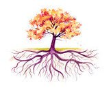 Tree,Root,Origins,Family Tree,Autumn,Growth,Family,Oak Tree,Watercolor Painting,Symbol,Ilustration,Leaf,Beauty In Nature,Falling,Changing Color,Strength,Branch,Painted Image,Cultures,Orange Color,Plants,Pink Color,Isolated On White,White,White Background,hand drawn,Stylized Tree,Tree Trunk,root system,prime of life,Concepts And Ideas,Brown,Hand Colored,Isolated,Traditional Watercolor,Studio Isolated,Scenics,Hardwood Tree,Mature Tree,Fall,falling leaves,Nature,Watercolor Illustration,Allegory Painting,Deciduous Tree,Textured