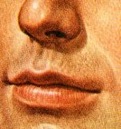 Human Lips,Human Mouth,Color Image,Human Nose,Close-up,The Human Body,Ilustration,Human Head,People,Human Face,Vertical,One Person,Illustration Technique