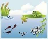 Tadpole,Frog,Pond,Frogspawn,Ilustration,Vector,Animal Egg,Growth,New Life,Plant,Water,Animal Leg,Cloud - Sky,Adolescence,Swimming Animal,Tail,cyclus,Offspring,Illustrations And Vector Art,Amphibians,Animals And Pets,Tail Fin,Cloudscape,Leaf