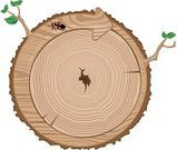 Wood - Material,Tree Ring,Tree Trunk,Tree,Plank,Cross Section,Symbol,Circle,Bark,Recycling,Timber,Material,Aging Process,Recycling Symbol,Striped,Arrow Symbol,Textured,Old,Insect,Leaf,Branch,Time,Alertness,Green Color,Environmental Conservation,Cracked,Animals And Pets,Nature,Concepts And Ideas,Protection,Environment,Nature,Nature Symbols/Metaphors,Insects,Isolated