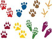 Paw Print,Footprint,Paw,Domestic Cat,Dog,Animal,Undomesticated Cat,Track,Bear,Bird,Animal Foot,Claw,Padding,Vector,Design Element,Ilustration,Hoof,Multi Colored,Illustrations And Vector Art,graphic element,Animals And Pets