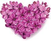 Lilac,Purple,Heart Shape,Valentine Card,Flower,May,Ideas,Springtime,Vibrant Color,Blossom,Pink Color,Concepts,Beauty,Symbol,Decoration,Happiness,Love,Celebration,Holidays And Celebrations,Plant,Nature,Illustrations And Vector Art,Valentine's Day,Beauty In Nature,Botany,Vector Florals,Beautiful,Season,Ilustration,Vector,Creativity,Isolated-Background Objects,Romance,Computer Graphic,Isolated Objects