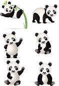 Panda,Cartoon,Vector,Bamboo,China - East Asia,Bear,Cute,Acrobat,Animal,Ilustration,Walking,Standing,Fun,Cheerful,Wildlife,Animals And Pets,Illustrations And Vector Art,Exoticism,Sitting,Humor,Vector Cartoons,Animals In The Wild,Nature,Climate,Paw,Hanging,Tropical Climate,Wild Animals