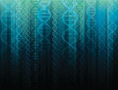 DNA,Helix,Helix Model,Research,Biology,Backgrounds,Seamless,Biotechnology,Genetic Research,Human Cell,Molecule,Science,Chromosome,Pattern,Repetition,Spiral,Vector,Blue,Data,Continuity,Symmetry,No People,Design,Digitally Generated Image,Computer Graphic,Design Element,Colors,strands,Ilustration,Part Of,Color Image